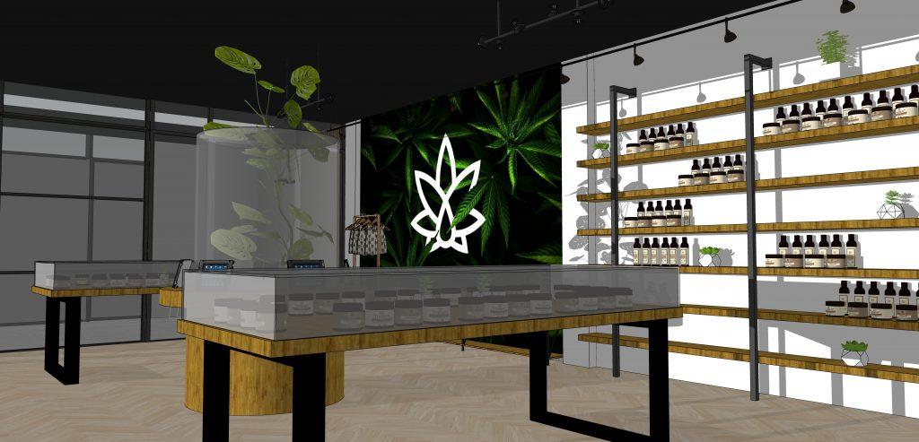 Cannabis 6